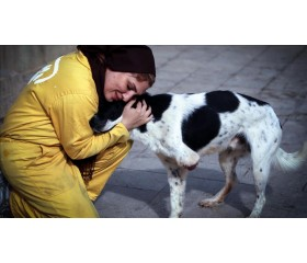 به حیوانات کمک و محبت کنید، کوپن تخفیف 10درصدی هدیه بگیرید