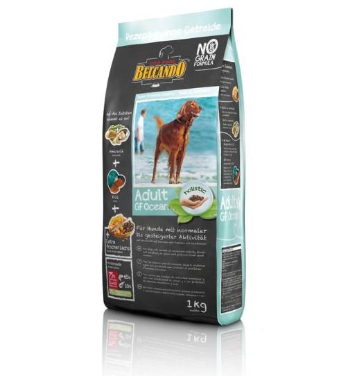 غذای خشک بدون غلات سگ بلکاندو - اقیانوسی/ 1 کیلویی/ Belcando ADULT GRAIN-FREE Ocean