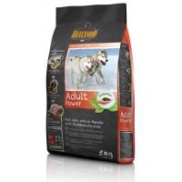 غذای خشک مخصوص سگ های با فعالیت بسیار بالا و سگ مادر/ 5 کیلویی/ Belcando ADULT POWER