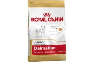 غذای خشک سگ رویال کنین مخصوص  سگ در حال رشد نژاد دالمیشن 2 تا 15 ماه/ 12 کیلویی/ Royal Canin Dalmatian Junior