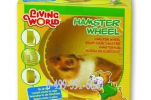 چرخ فلک پایه دار  مخصوص همستر/  Plastic Hamster Wheel