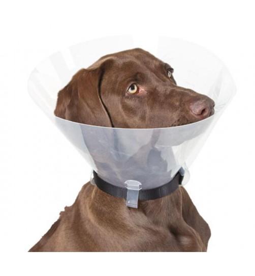 گردنبند الیزابت/ Dog Surgical Collar