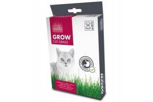 بذر  سبزه گربه