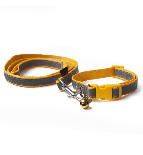 قلاده گردنی تسمهای  شبرنگ سگ - سایز 2 همراه با لید
