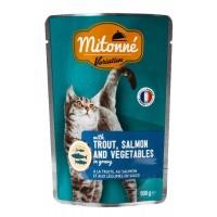 پوچ گربه mitonne- ماهی قزل آلا و سالمون با سبزیجات