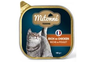 کنسرو کاسه ای گربه mitonné با گوشت مرغ