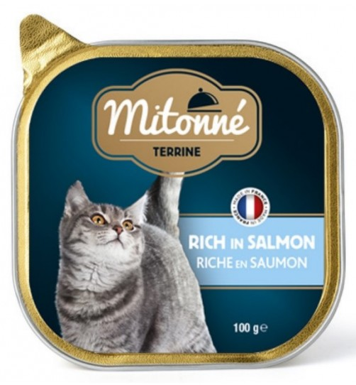 کنسرو کاسه ای گربه mitonné با ماهی سالمون