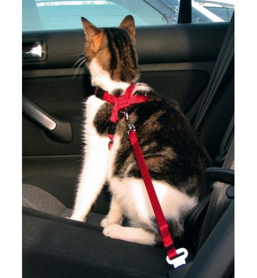 قلاده بدنی گربه  با بند اتصال به صندلی اتومبیل
