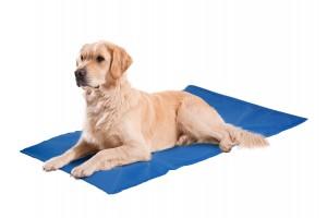 تشک خنک کننده مخصوص سگ/ 50×90 cm