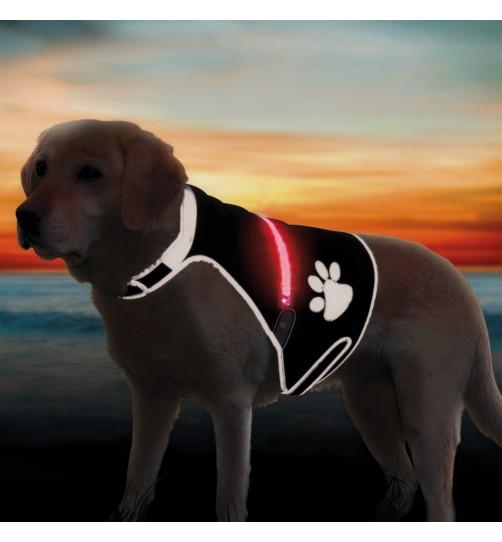 جلیقه ایمنی سگ با فلش USB