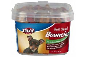 تشویقی مخصوص توله سگ و سگ های بسیار کوچک Bouncies