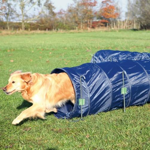 تونل Agility Basic سگ/ 5 متری
