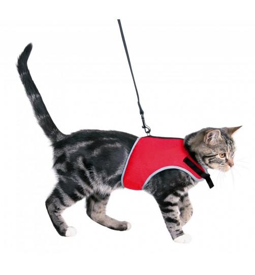 قلاده کمری گربه همراه با بند/ قرمز