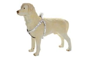 قلاده کتفی سگ مدل Envy harness Wild Forever / سفید طرح دار
