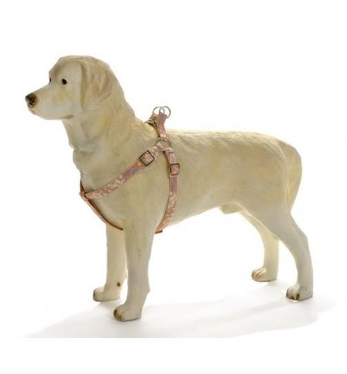 قلاده کتفی سگ مدل Hula Hula / نارنجی گل دار
