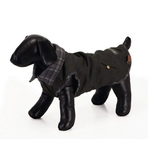 کت پشمی سگ مدل Toss