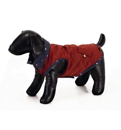کت پشمی سگ مدل Copa