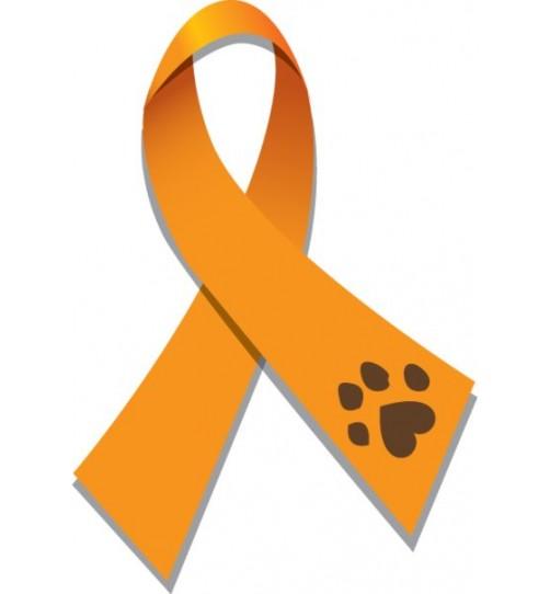 دارو و درمان حیوانات آسیب دیده و بی سرپرست